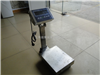 上海越衡—300kg不锈钢台秤供应商