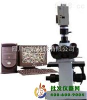 倒置金相顯微鏡XYU-40C