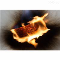 RFID耐高温抗金属标签IRON Tag 176 H3 915MHz耐强酸碱腐蚀标签